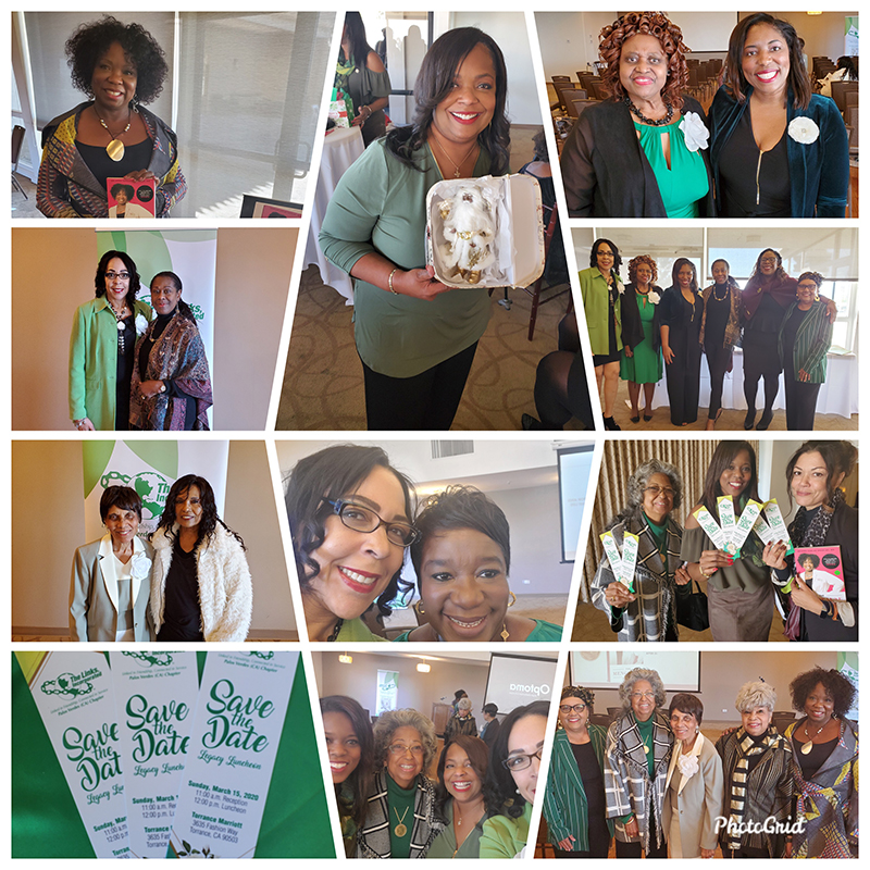 Palos Verdes Chapter, The Links, Inc. Health and Human Services 4